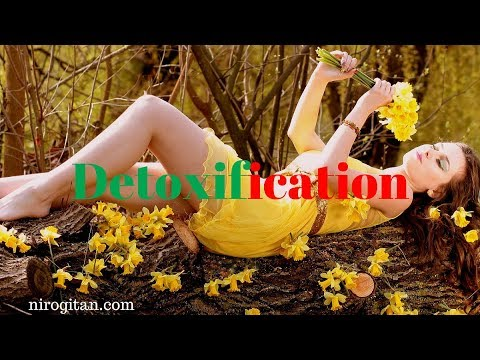 Detoxification: Salubrious Program for Naturally Elimination and Prevention of PCOS & Ovarian Cysts