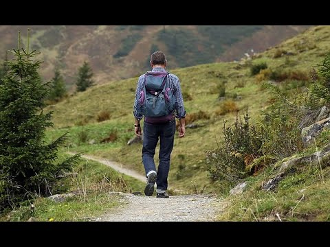 Can Walking In Nature Change Your Brain? Doctors Say Yes!