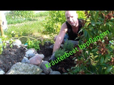 kräuterbeet-anlegen-/-bepflanzen-teil2