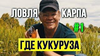Как сварить кукурузу для карпа Первая часть