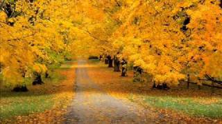 Осенние листья, на землю спадают.