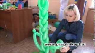 Урок 3. Пальма из воздушных шаров