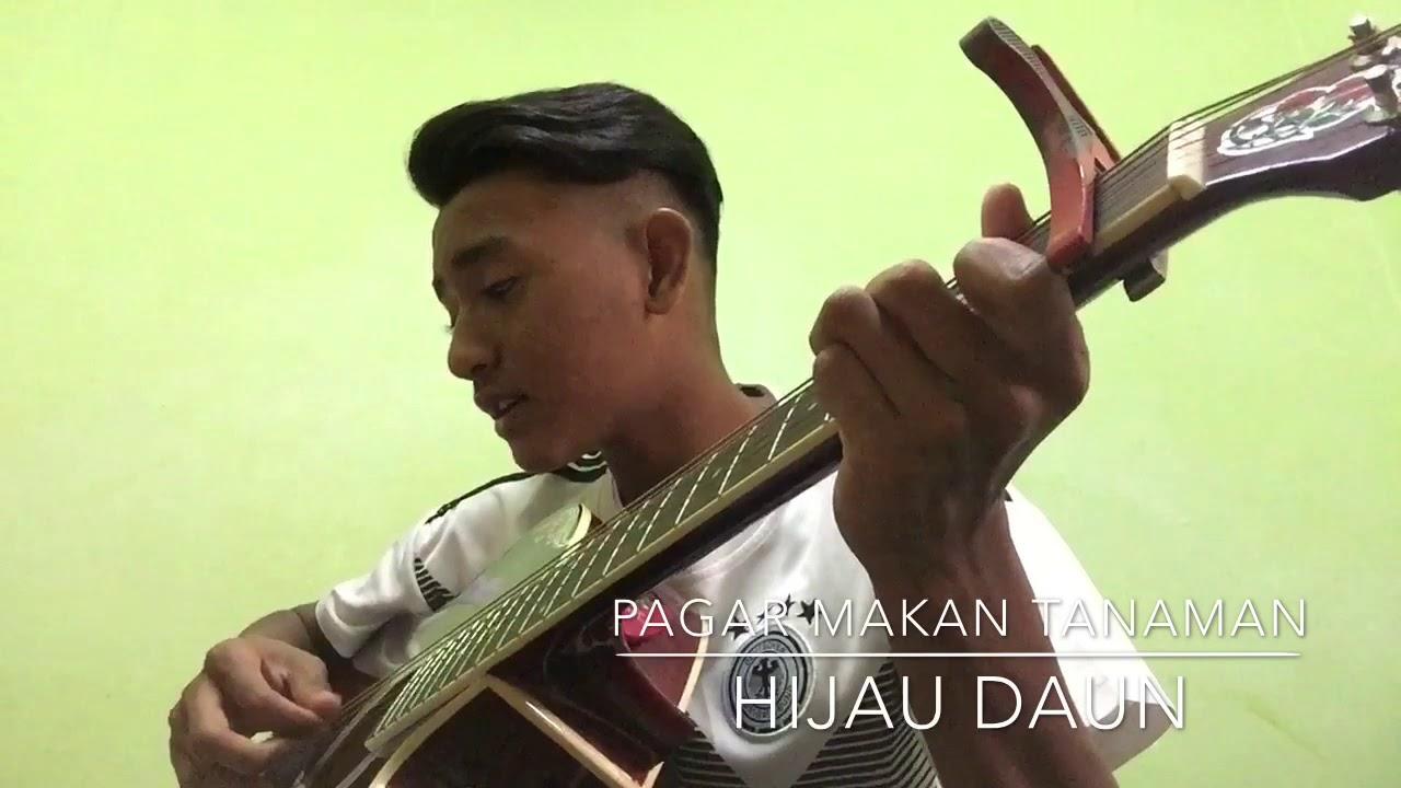 Pagar Makan Tanaman   Hijau Daun Cover   YouTube