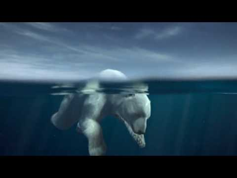 Pub Greenpeace (Iceberg)