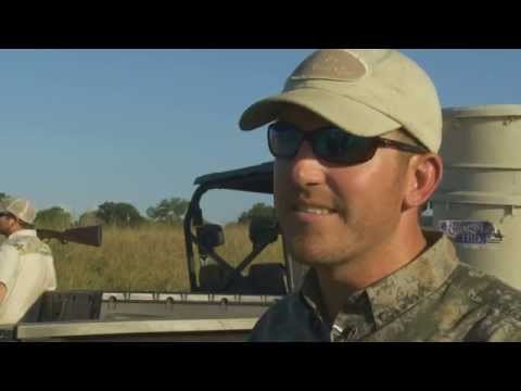 The Texas Bucket List - Texas Dove Hunting