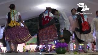 Expo Feria Huixtepec 2016: Delegación de San Pablo Huixtepec (Baile del Tepache)