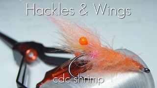 Fly Tying CdC Shrimp | Hackles & Wings