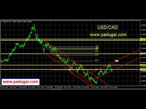 Forex Trading Tamil Tips USD/CAD Currency Market