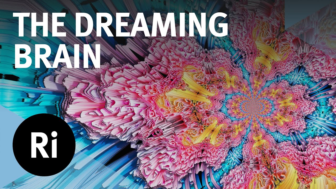 What Do Our Brains Do When We're Dreaming?- with Mark Solms