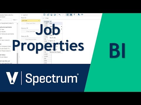 Spectrum BI Job Properties