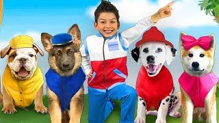 Sasha, Max y perritos ayudan a Sasha a salvar los juguetes