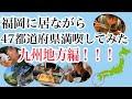 福岡に居ながら47都道府県満喫してみた〜九州地方編〜【はづちゃんねる】