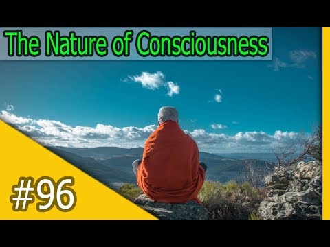 Waking Up with Sam Harris #96 - The Nature of Consciousness with Thomas Metzinger