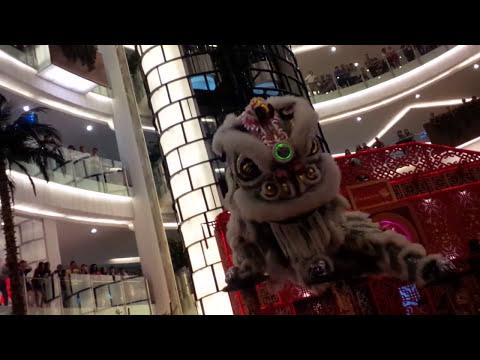 VID 20160213 203257 Lion dance at Emporium Pluit Mall