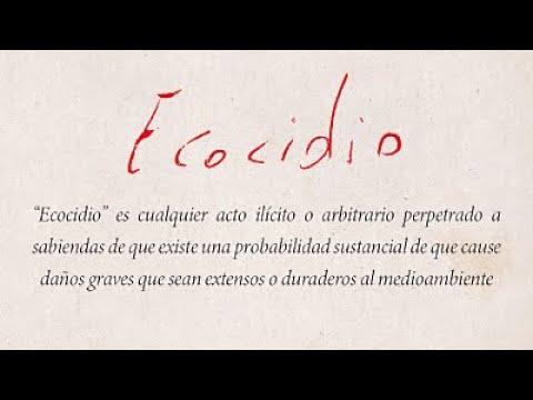 Presentación pública de la definición de Ecocidio en español