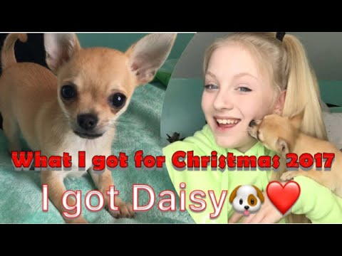 WHAT I GOT FOR CHRISTMAS 2017 /  HAUL / SLIME / ADIDAS / INTRODUCING DAISY /