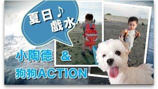 【可愛遊記】小陶德第一次跟狗狗Action去海邊玩~ |Baby Tod 18 Months 1st Time at Beach|沛莉 Peri Makeup