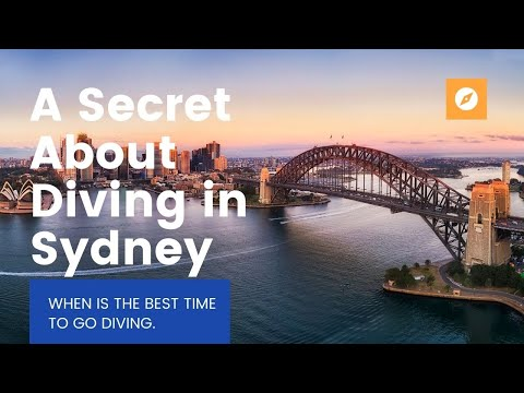 A Secret about Diving in Sydney