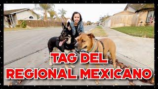 Tag del REGIONAL MEXICANO - Leo Gallegos