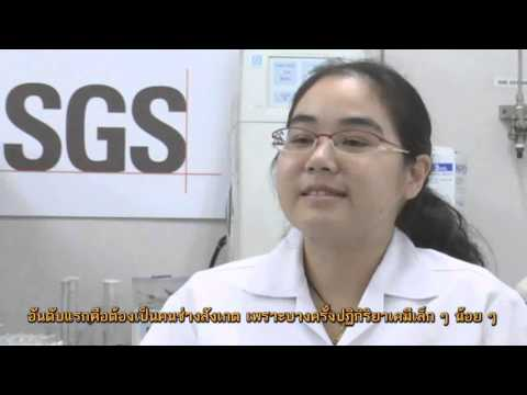 บันไดสายอาชีพ ตอน นักเคมี