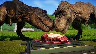 2 T Rex vs 2 Spinosaurus, 2 Indominus Rex, 2 Giganotosaurus, 2 Stegoceratops - Dinosaurs Fighting