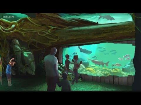 Sneak Peek: New St. Louis Aquarium