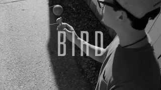 bird   sweets kendamas   tips tricks