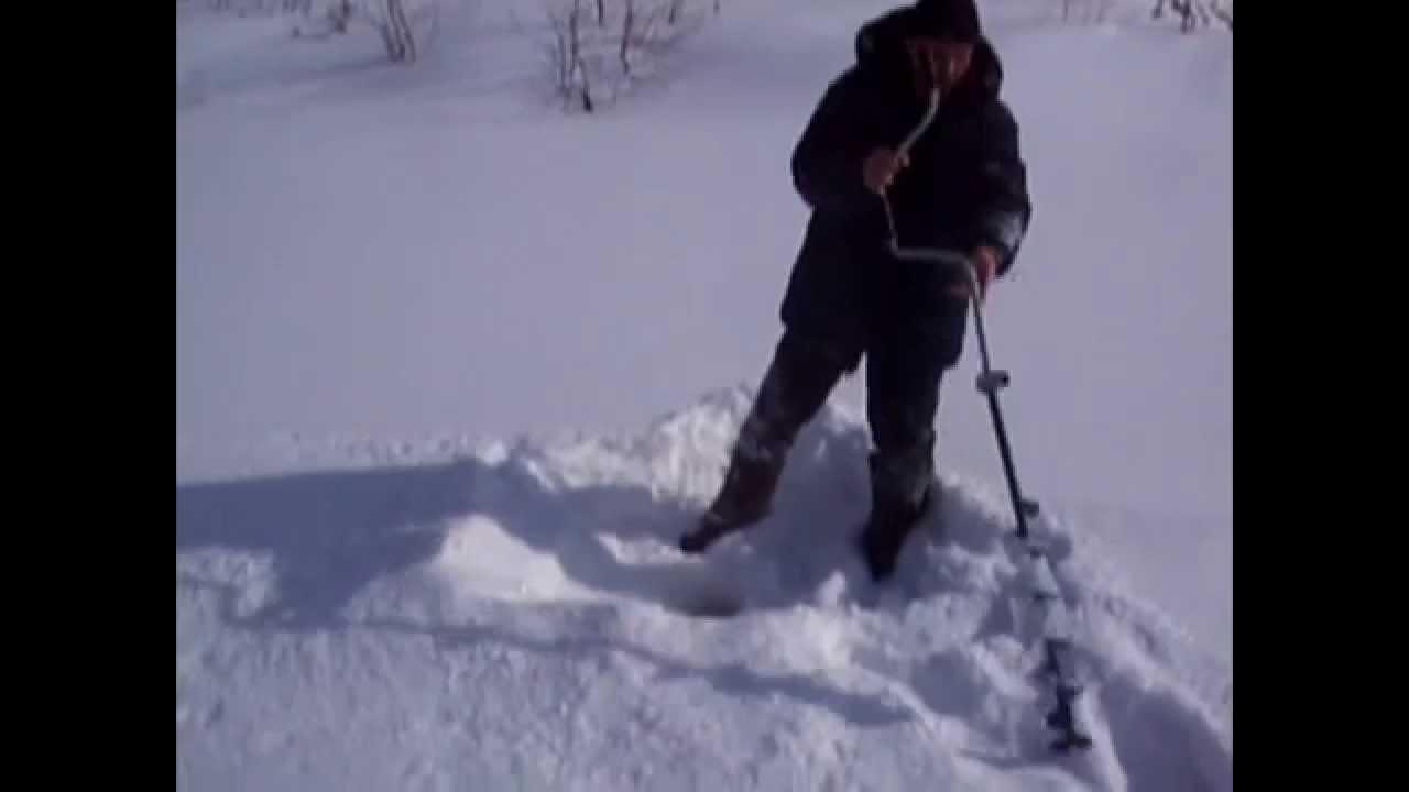 Есенин стихи о зиме поет зима аукает слушать