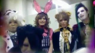 ANIMAL ZOMBIE ZOO PV