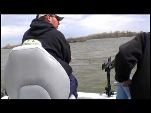 30.5 inch Walleye - Missouri River North Dakota Fishing