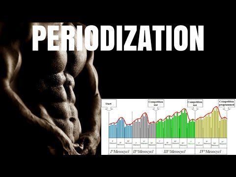 Periodization: The Key to Consistent Muscle Gains | Part 1
