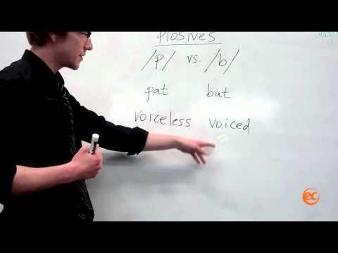 EC San Francisco - 'Plosives' Pronunciation lesson