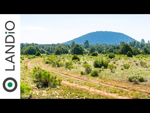 SOLD By LANDiO •Land In New Mexico : 11 Acre Ranch Near BLM & National Forest