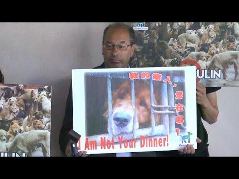 Masyarakat A.S. Protes Festival Daging Anjing Yulin Tiongkok
