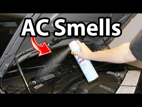 How to Remove AC Smells in Your Car (Odor Life Hack)