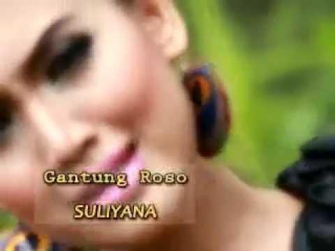 Gantung Roso - Suliyana