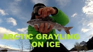 Quarry Lake Grayling Ice Fishing Jaw Jacker