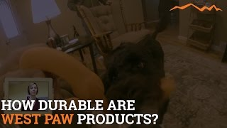 Are West Paw Dog Toys the Most Durable?  Review of West Paw Dog Toys