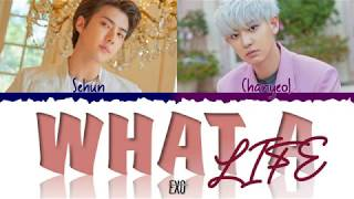 Exo-Sc 39 What a life 39 LYRICS Color Coded ENG.mp3