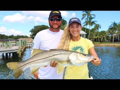 Mullet Run Inshore Saltwater Fishing For Snook In Stuart, Florida