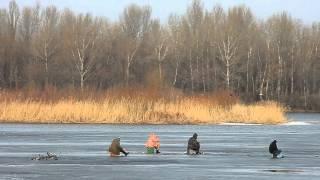 Живая картина - Зимняя рыбалка.