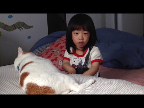 [Full]The cat loves my daughter in the afternoon!