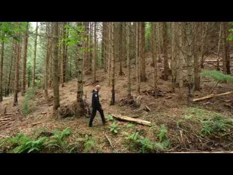 Despre silvicultură și protecția naturii cu Mihai Zotta