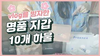 Vlog & 명품 지갑 10개 하울♡ (샤넬, …