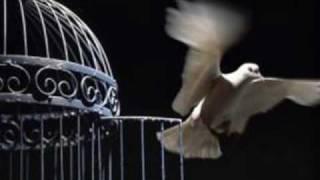 Cárceles al aire libre