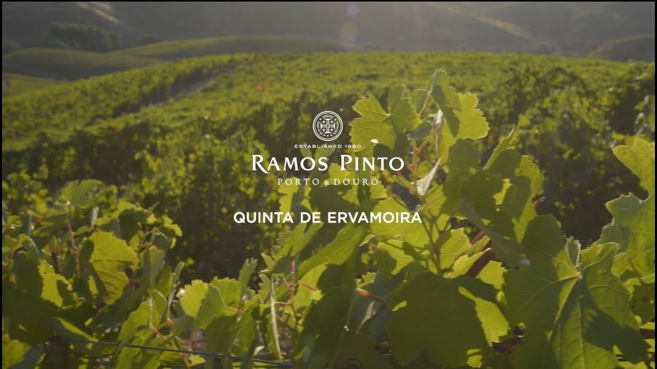 Ramos Pinto - Quinta Ervamoira (Short Version) - YouTube
