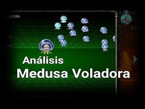 MSA - Medusa Voladora - Análisis de Unidades