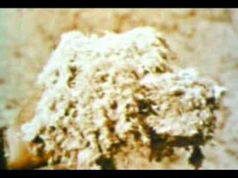 asbestos-in-building-construction-1959