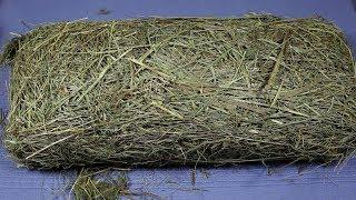 ASMR Hay Meadow