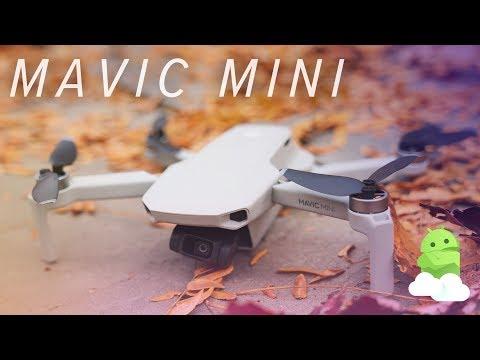DJI Mavic Mini review: The perfect starter drone